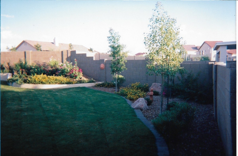 Back yard 1998_cropped