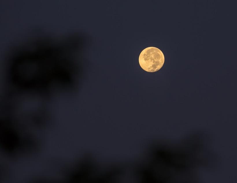 September full corn moon