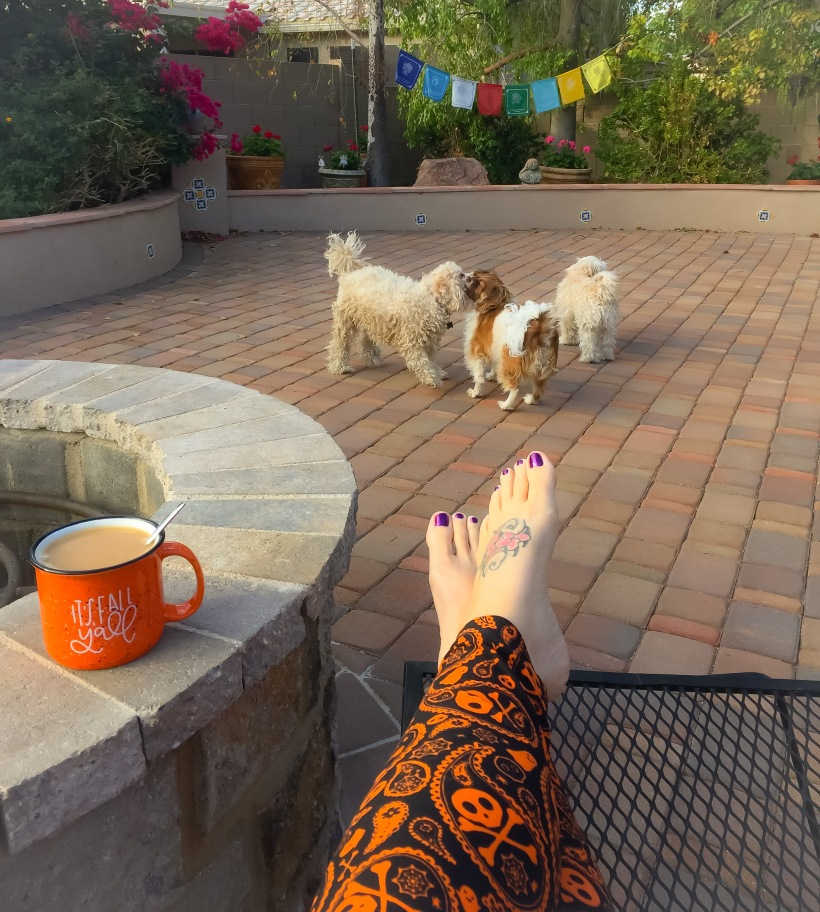 Chai tea and puppies on All Hallows' Eve.